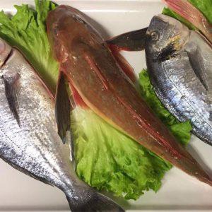 Cesenatico-ristorante-pesce-da-giuliano