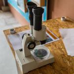 microscopio per mostra di insetti