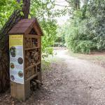 percorso educativo nella casa degli insetti